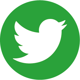 moyo-paper twitter